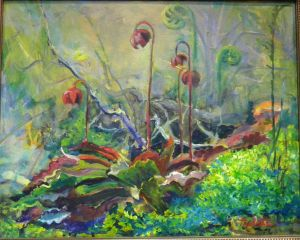 Pitcher Plant Revised