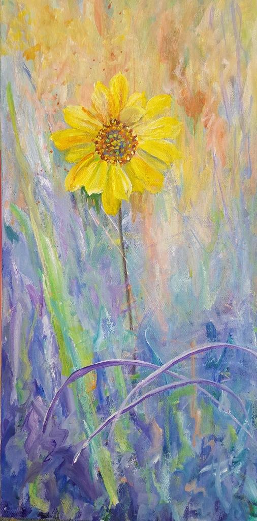 western-sunflower